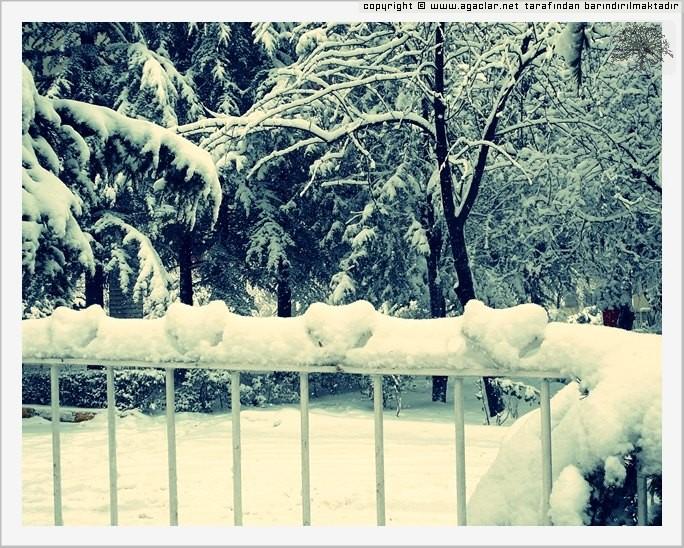 Kar'a Aşk Kar Da Aşk