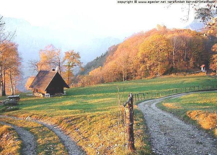 İSveç'te sonbahar-7